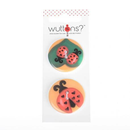 Assortiment 2 boutons coccinelle