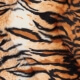 Tissu peau de tigre fine fourrure