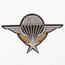 Ecusson air force parachutiste