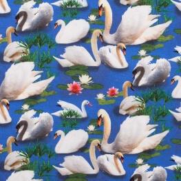 Tissu jersey lovely swans - Bleu