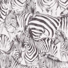 Tissu jacquard zèbres - Noir & blanc