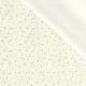 Tissu Popeline Étoiles en fête 100% Coton Bio GOTS - Ecru