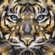 Carré Jacquard Tigre - Noir
