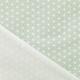 Tissu Coton Enduit étoiles asanoha - Vert céladon & Blanc