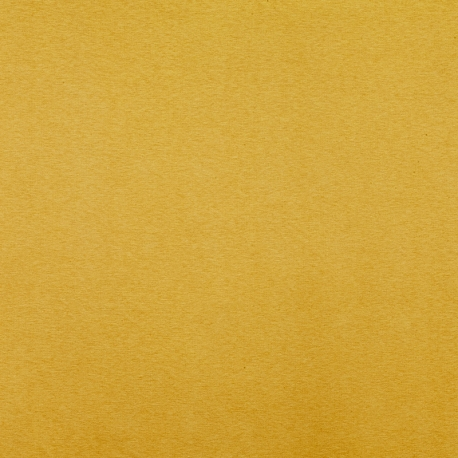 Tissu Jersey Sweat Uni Molletonné - Moutarde